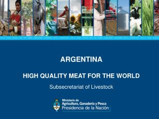 ARGENTINA HIGH QUALITY MEAT FOR THE WORLD Subsecretariat of Livestock
