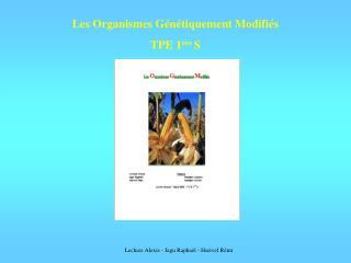 Les Organismes Génétiquement Modifiés TPE 1 ére  S