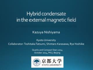 Hybrid condensate in the external magnetic field