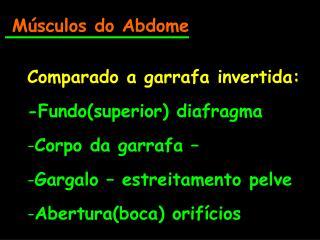 Músculos do Abdome