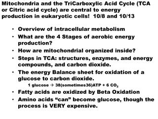 Overview of intracellular metabolism What are the 4 Stages of aerobic energy production?