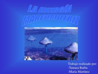 Trabajo realizado por: -Tamara Barba -Mar�a Mart�nez