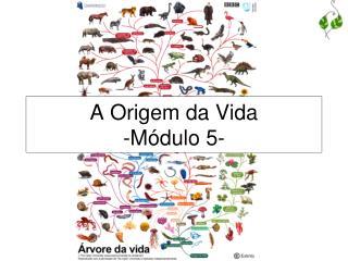 A Origem da Vida -Módulo 5-