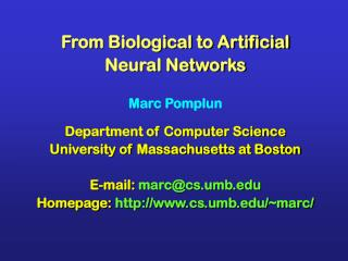 From Biological to Artificial  Neural Networks Marc Pomplun Department of Computer Science