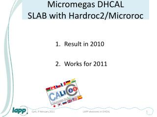 Micromegas  DHCAL SLAB  with  Hardroc2/ Microroc