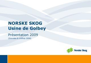 NORSKE SKOG Usine de Golbey