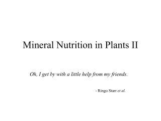 Mineral Nutrition in Plants II