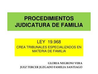 PROCEDIMIENTOS JUDICATURA DE FAMILIA