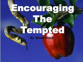 Encouraging The Tempted