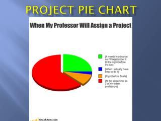 Project Pie Chart