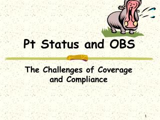 Pt Status and OBS