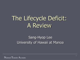 The  Life c ycle Deficit : A Review