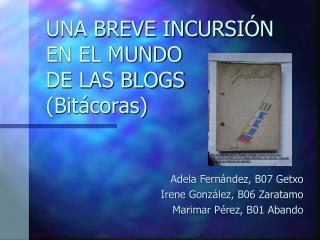 UNA BREVE INCURSIÓN EN EL MUNDO DE LAS BLOGS (Bitácoras)