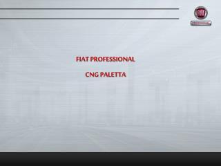 FIAT PROFESSIONAL  CNG PALETTA