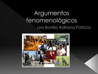 Argumentos fenomenológicos