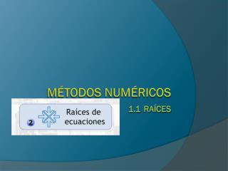 MÉTODOS NUMÉRICOS 1.1 Raíces