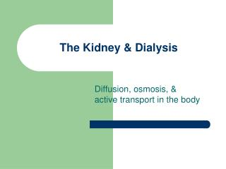 The Kidney & Dialysis