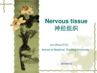 Nervous tissue 神经组织