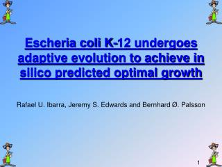 Escheria coli K-12 undergoes adaptive evolution to achieve in silico predicted optimal growth
