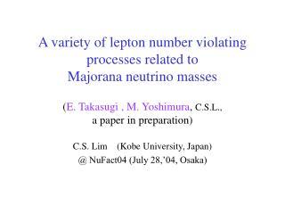 C.S. Lim    (Kobe University, Japan)  @ NuFact04 (July 28,'04, Osaka)