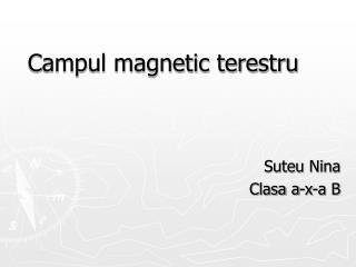 Campul magnetic terestru