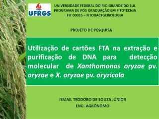 ISMAIL TEODORO DE SOUZA JÚNIOR ENG. AGRÔNOMO