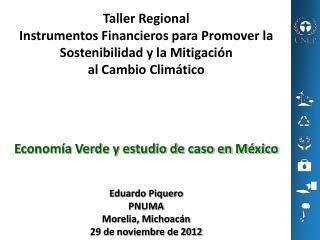 Taller Regional Instrumentos�Financieros�para Promover la Sostenibilidad y la Mitigaci�n