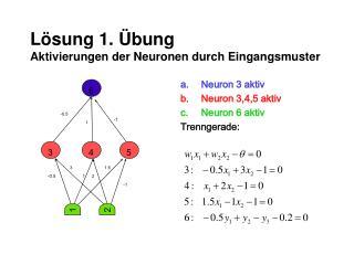Lösung 1. Übung Aktivierungen der Neuronen durch Eingangsmuster
