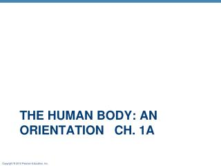 The Human Body: An  Orientation   Ch . 1a