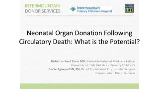 Neonatal Organ Donation Following Circulatory Death: What is the  Potential?