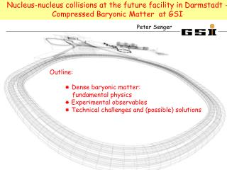 Nucleus-nucleus collisions at the future facility in Darmstadt -