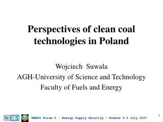Perspectives of clean coal technologies in Poland