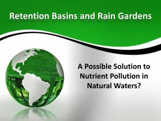 Retention Basins and Rain Gardens