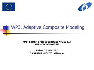 WP3. Adaptive Composite Modeling