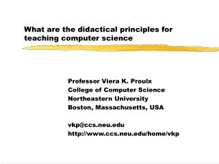 What are the didactical principles for teaching computer science