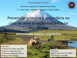 Prevenção primária e secundária no caso de uma erupção vulcânica na Ilha do Pico