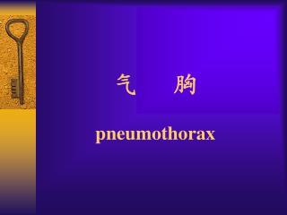 气   胸 pneumothorax