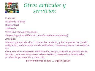 Otros  articulos  y servicios: