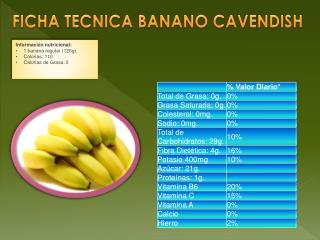 FICHA TECNICA BANANO CAVENDISH