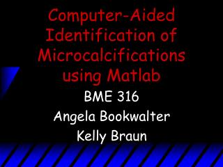 Computer-Aided Identification of Microcalcifications using Matlab