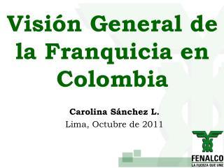 Visión General de la Franquicia en Colombia