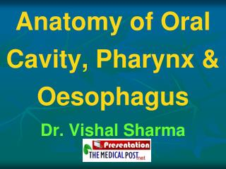 Anatomy of Oral Cavity, Pharynx  Oesophagus