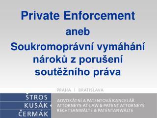 Private Enforcement  aneb Soukromoprávní vymáhání nároků z porušení soutěžního práva