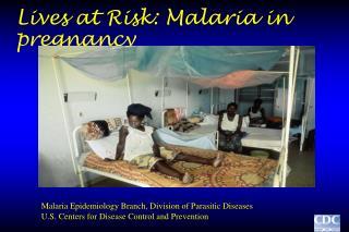Lives at Risk: Malaria in pregnancy