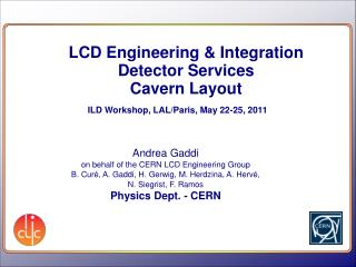 LCD Engineering & Integration Detector Services Cavern Layout