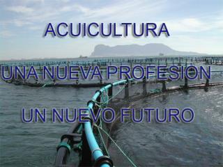 TECNICO SUPERIOR EN PRODUCCION ACUICOLA. TECNICO EN OPERACIONES ACUICOLAS