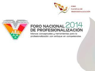 V Foro Nacional de Profesionalización 2014.