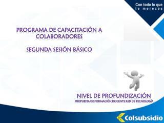 Programa de capacitaci�n a colaboradores Segunda sesi�n b�sico
