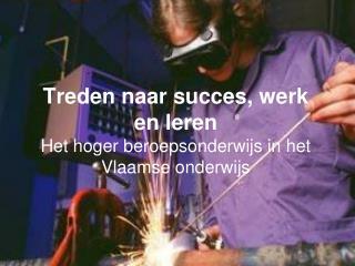 Treden naar succes, werk en leren Het hoger beroepsonderwijs in het Vlaamse onderwijs