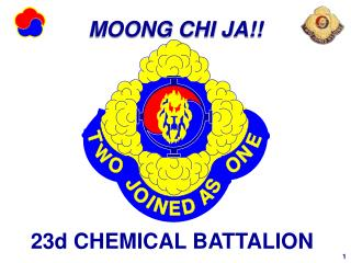 23d CHEMICAL BATTALION